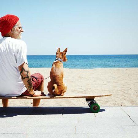 Pregunta legal: La fotografía de animales y el derecho a la fotografía