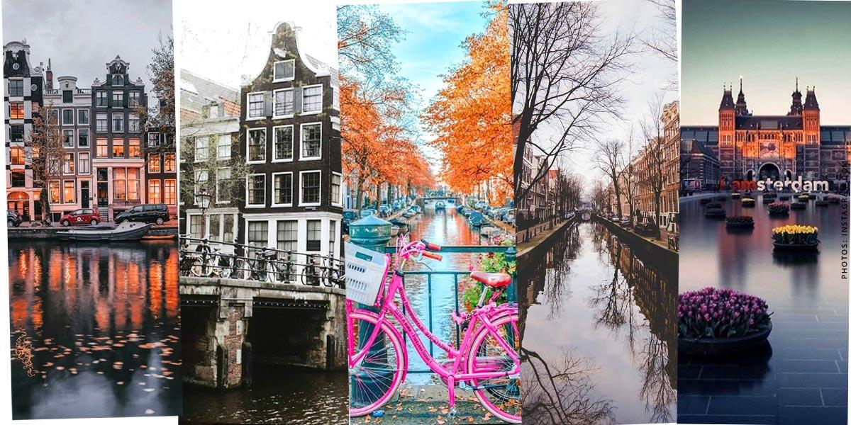 Holanda: Vacaciones con niños y perros - Turismo, hoteles y mar