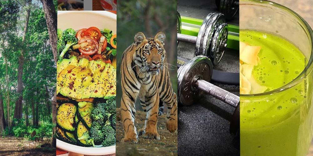 Motivado para el nuevo Año - Los mejores Ejercicios de Fitness para su Casa