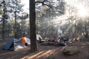 Bosque Negro: Naturaleza, bienestar & camping - senderismo en las montañas