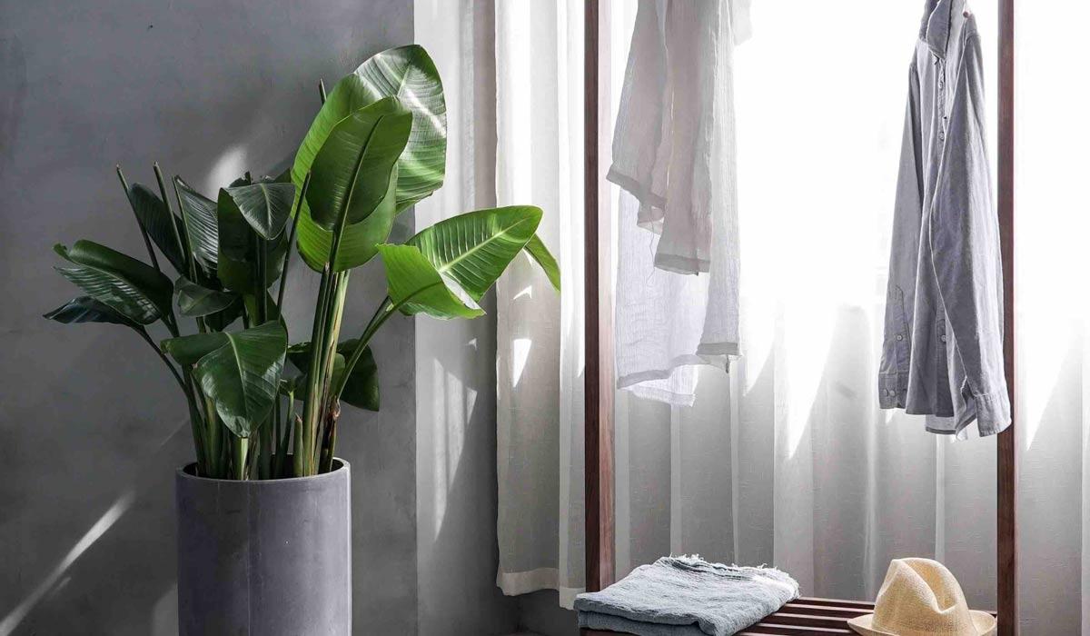 El arte de la vida minimalista: de la ropa al hogar