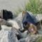 Zapatos de verano para mujeres: Sandalias, separadores de dedos, mulas & Co. – Top 5